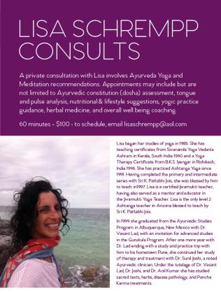 lisa schrempp_consults